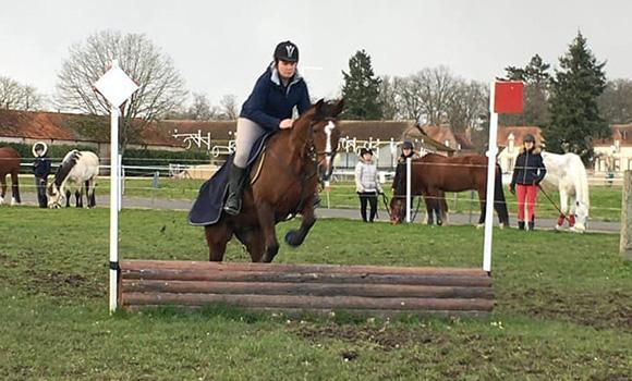 préparation aux compétitions équestres
