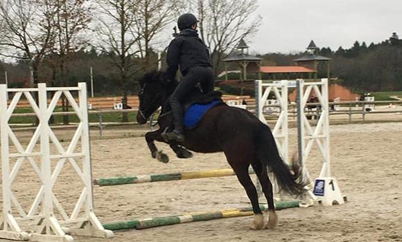 cours équitation