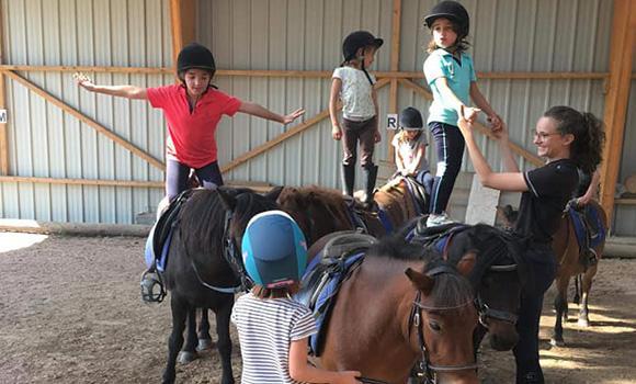 initiation équitation